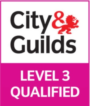 city guilds 3